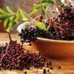 19 Nov 2007 --- Fresh elderberries --- Image by © Teubner Foodfoto/the food passionates/Corbis