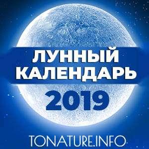 ЛУННЫЙ КАЛЕНДАРЬ 2019 для садовода