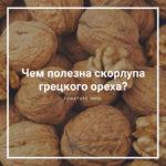 Чем полезна скорлупа грецкого ореха?